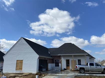 Residential Property for sale in 193 SWEETBRIAR CIR, Canton, MS, 39046