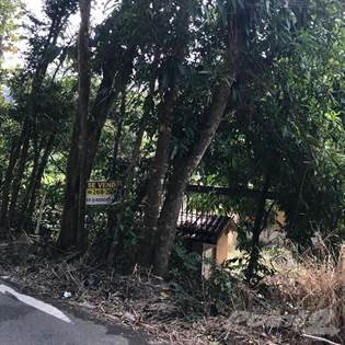 Lots And Land for sale in BARRIO NEGROS (repo), Corozal, PR, 00783