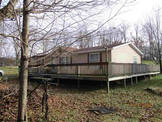 Single Family for sale in 8736 DRY FORK Road, Hendricks, WV, 26271