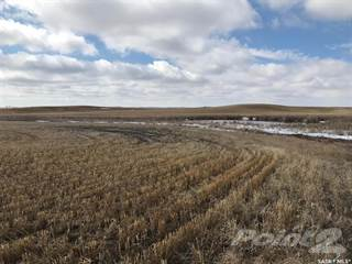 Farm And Agriculture for sale in Lakeview Land, RM of Lakeview No 337, Saskatchewan