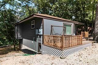 Single Family for sale in 710 Leuckel Dr, Van Buren, MO, 63965