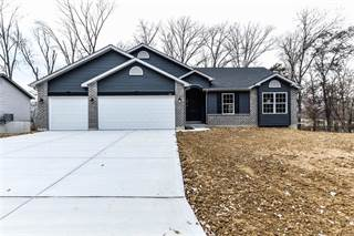 Single Family for sale in 302 Mike Drive, Truesdale, MO, 63383