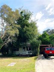 Single Family for sale in 701 VINCENT STREET, Crystal Beach, FL, 34681