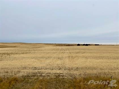 Farm And Agriculture for sale in RM 49 - 1,530 ac. Deeded, 2,240 ac. Crown Lease, Eastend, Organic, RM of White Valley No 49, Saskatchewan