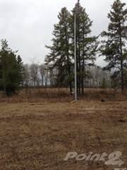 Land for rent in Lot 2  Blk 3 Plan 102093285, RM of Hudson Bay No 394, Saskatchewan