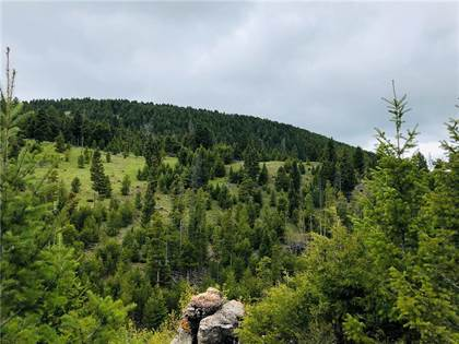 Lots And Land for sale in Tbd Osprey Lane, Helmville, MT, 59843