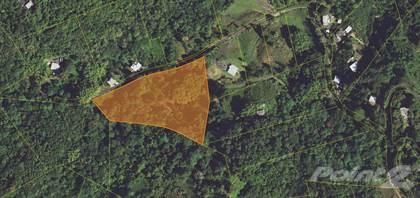 Lots And Land for sale in Bo. Sumidero, Aguas Buenas PR, Aguas Buenas, PR, 00703