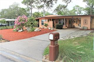 Single Family for sale in 221 WESTWINDS DRIVE, Palm Harbor, FL, 34683