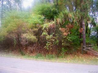 Land for sale in VACANT FARWELL LAKE Road, Horton, MI, 49246