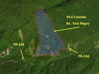 Single Family for sale in 00638 SECTOR LAS PIEDRAS, Ciales, PR, 00638