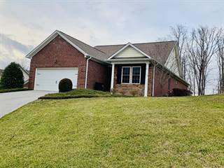 Single Family for sale in 2202 Mountain Drive, Lenoir City, TN, 37772