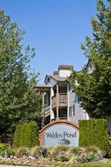 Apartment for rent in Walden Pond - 1/1-BR, Everett, WA, 98204
