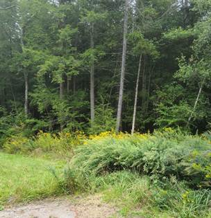 Lots And Land for sale in Lot 4118 SYCAMORE LN, Pocono Summit, PA, 18346