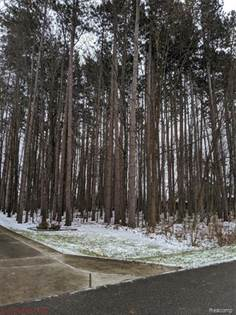 Lots And Land for sale in 15151 MURRAY WOODS Court, Byron, MI, 48418
