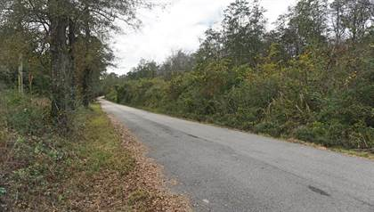 Lots And Land for sale in 17 Ac Corbit Blvd, Mclain, MS, 39456