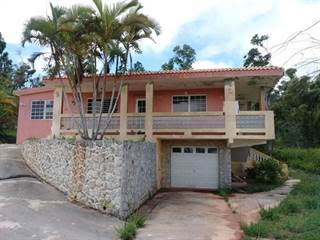 Single Family for sale in 569 CALLE, Orocovis, PR, 00720