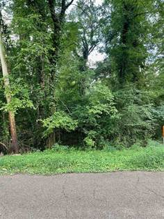 Lots And Land for sale in 00-00 KAVANAUGH DR 22, Vicksburg, MS, 39180