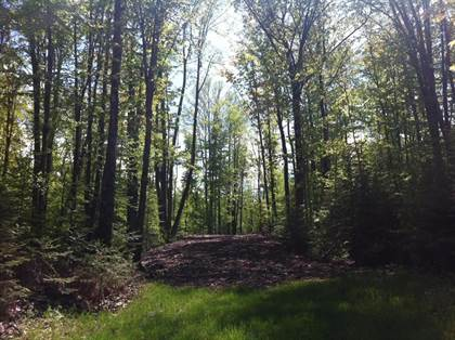 Lots And Land for sale in XXX CTH O, Tomahawk, WI, 54487
