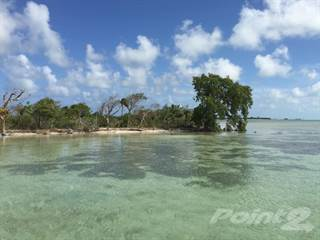 Other Real Estate for sale in Rosewood Caye, 1 mile from Ambergris Caye, Ambergris Caye, Belize