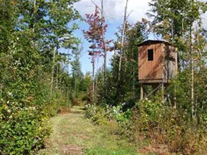 Lots And Land for sale in TBD Water Tower, White Pine, MI, 49971