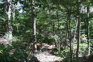 Land for sale in Lot #19 Henley Road, Labelle, Nova Scotia