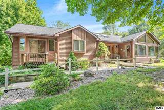 Single Family for sale in 12640 HORNING RD, Brooklyn, MI, 49230