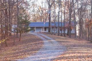 Single Family for sale in 364 Pauper Farm Road, Elizabethtown, IL, 62931
