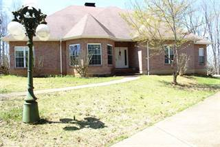 Single Family for sale in 1775 Hwy AA, Piedmont, MO, 63957