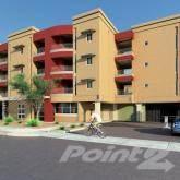 Apartment for rent in 1130 East Monroe Street, Phoenix, AZ, 85034