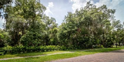 Lots And Land for sale in 0 ST JOHNS AVE, Green Cove Springs, FL, 32043