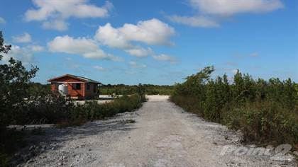 Lot/Vacant Land for sale in The Not So Secret Beach- Lots For Sale with Seller Financing, Ambergris Caye, Belize