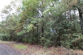 Land for sale in 00 Co. Rd. 151, Jasper, TX, 75951
