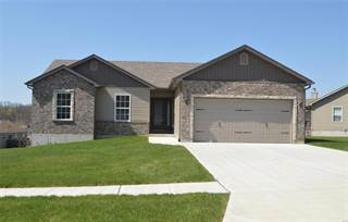 Single Family for sale in 821 Hawks Circle Drive, Hillsboro, MO, 63050