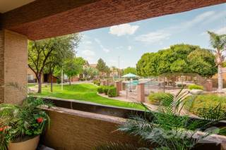 Apartment for rent in Galleria Palms - Marina, Tempe, AZ, 85282