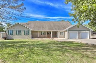 Single Family for sale in 1139cr 2400e, Homer, IL, 61849