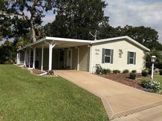 Residential Property for sale in 83 Habersham Drive 206, Flagler Beach, FL, 32136