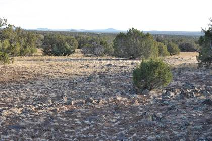 Lots And Land for sale in 12K Maverick, Snowflake, AZ, 85912