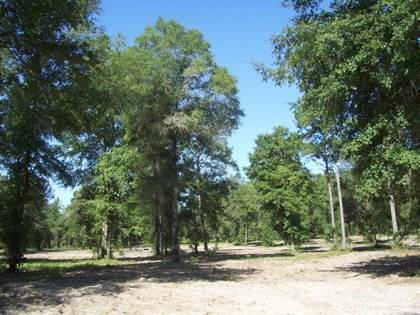Lots And Land for sale in TBD SW CR 751, Jasper, FL, 32052