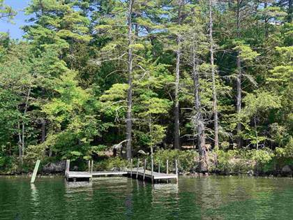 Lots And Land for sale in 88 Cow Island, Tuftonboro, NH, 03816