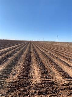 Farm And Agriculture for sale in 0 County Road 5200, Abernathy, TX, 79311