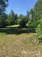 Land for sale in 1402 1st AVENUE, Tobin Lake, Saskatchewan, S0E 0E0