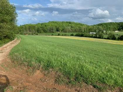 Farm And Agriculture for sale in 0 Pergram Road, Owingsville, KY, 40360