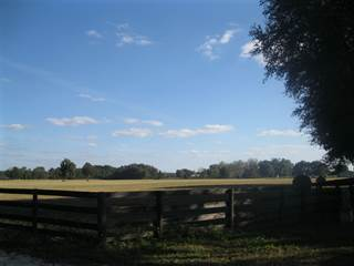Farm And Agriculture for sale in 3459 SW 57th Place, Trenton, FL, 32693