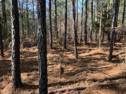 Lots And Land for sale in CR 417, Woodland, MS, 38878