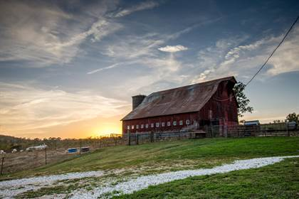 Farm And Agriculture for sale in 2899 State Hwy 38, Hartville, MO, 65667