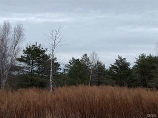 Land for sale in Lot 19 Hinman Road, Pulaski, NY, 13142