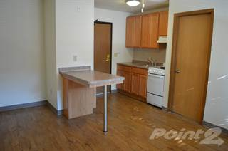 Apartment for rent in Elliot Court, Minneapolis, MN, 55404