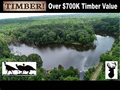 Lots And Land for sale in 25599 Hwy 310, Como, MS, 38619