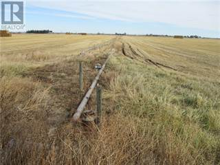 Farm And Agriculture for sale in 92027 RR 21-3 Street N, Lethbridge, Alberta, T1H6P3