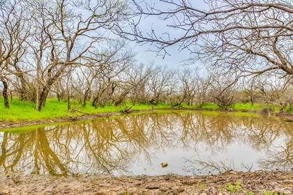 Lots And Land for sale in FM 382, Ballinger, TX, 76821